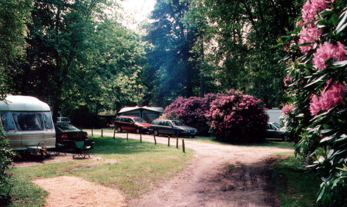 Berkshire - Campsite - California Chalet & Touring Park