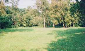 Surrey - Campsite - Mellow Farm Campsite