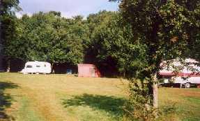 Berkshire - Campsite - Treetops Campsite