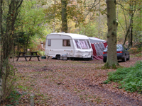 Berkshire - Campsite - Wellington Country Park